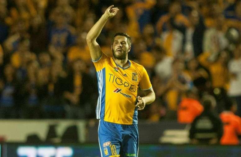 Tigres se proclamó campeón ante América en la tanda de penaltis. AFP