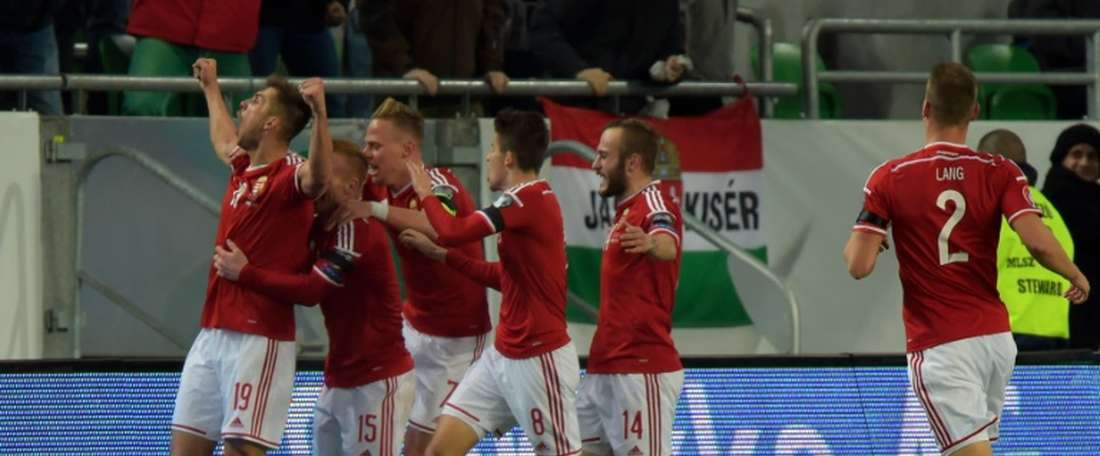 Hungary ended 30 years of hurt by qualifying for Euro 2016. Twitter