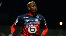 Momentos incríveis do jovem Victor Osimhen pelo Lille. AFP