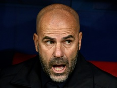 Peter Bosz is not giving up on Leverkusen's CL hopes. AFP