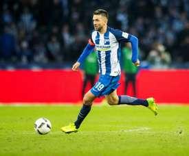 Bosnian trailblazer Ibisevic quits national team. AFP