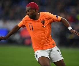 Ryan Babel has joined Fulham to aid their fight for Premier League survival. AFP