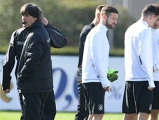Germanys head coach Joachim Loew