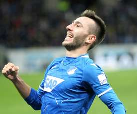 Adamyan scored in Hoffenheim's come from behind victory over Dortmund. AFP