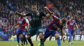 El Crystal Palace quiere a Lex Allan. AFP