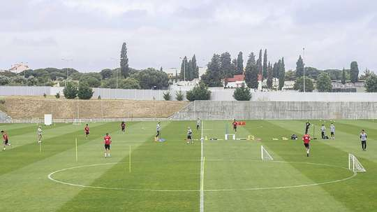 Benfica's Tavares has got COVID-19. AFP