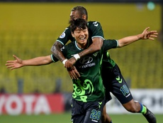 Korean great Lee helps Jeonbuk to title in final game. AFP