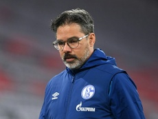 Schalke have fired David Wagner as head coach after 18 matches without a win. afp_en