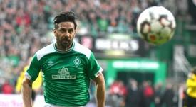 Veteran Pizarro to continue at Werder Bremen. AFP