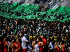 41 supporters du Sporting condamnés pour l'invasion du centre d'entraînement. AFP