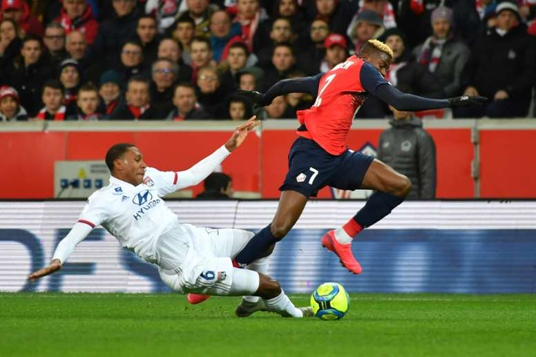 Best of Victor Osimhen at Lille.  AFP
