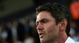 Ripoll se rindió ante el juego de España. AFP
