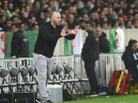 'Les supporters ont fait un travail magnifique', a salué Djamel Belmadi,