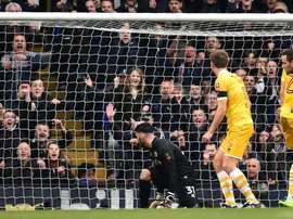 L'attaquant de Tottenham Vincent Janssen, marque le 5e des 6 buts de son équipe face à Millwall. AFP