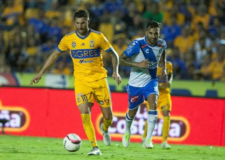 Les Tigres dAndré-Pierre Gignac, face à Puebla, dans le stade de Monterrey au Mexique. AFP