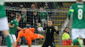 Les Pays-Bas sont qualifiés pour l'Euro-2020. AFP