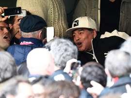 Diego Maradona avant la demi-finale du Mondial-2015 de rugby Argentine-Australie, le 25 octobre 2015 à Twickenham
