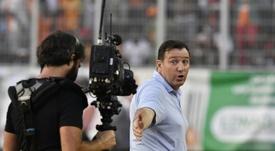 Wilmots podría ser el próximo seleccionador de Irán. AFP