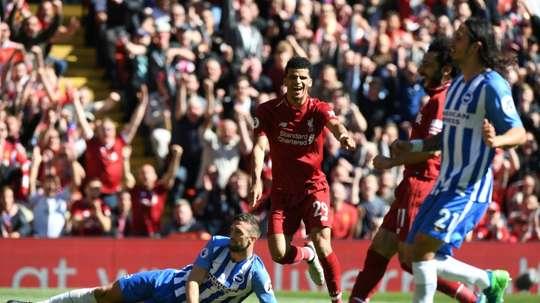Solanke celebrates scoring against Brighton. AFP
