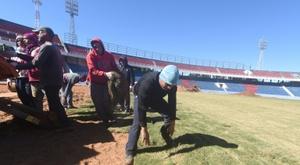 Des ultras du club paraguayen de Cerro Porteno posent la pelouse de leur nouveau stade. AFP