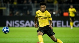 Witsel is tipping Sancho for big things. AFP