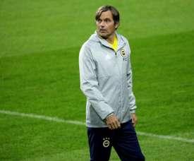 Fenerbahçe Phillip Cocu Ligue Europa. AFP