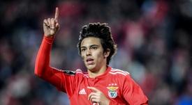 João Félix terá uma cláusula de 350 milhões no Atlético. AFP