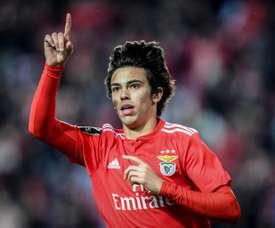 Le Real Madrid a tenté de recruter Joao Felix. AFP