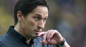 Roger Schmidt apunta al Schalke 04. AFP