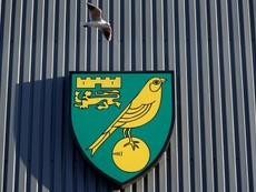 Premier League: un joueur de Norwich positif au coronavirus. AFP