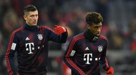 Les attaquants du Bayern Lewandowski et Coman. AFP