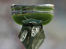 Le trophée de l'Euro -19 ans détenu par la France, avant l'édition 2017 en Géorgie. AFP