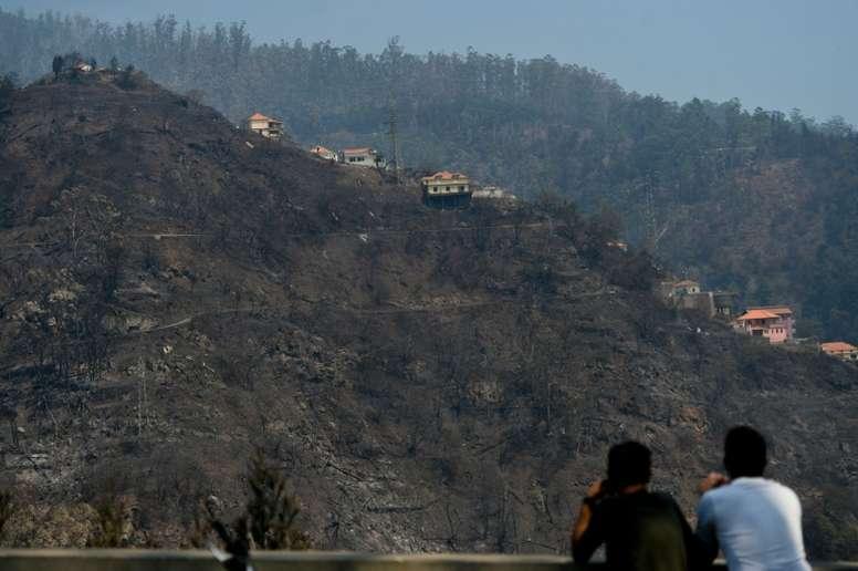 Les dégâts causés pas les incendies à Babosas Funchal sur lîle de Madère, le 11 août 2016