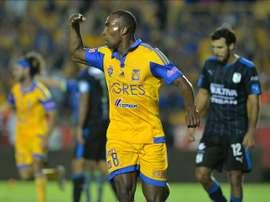 Joffre Guerron de Tigres festeja una anotación ante Querétaro, este 29 de agosto de 2015, durante un partido correspondiente a la jornada 7 del torneo Apertura 2015 celebrado en el estadio Universitario de la ciudad de Monterrey (México). EFE