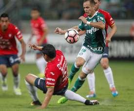 Palmeiras sucumbió en Bolivia Wilstermann. EFE/Archivo