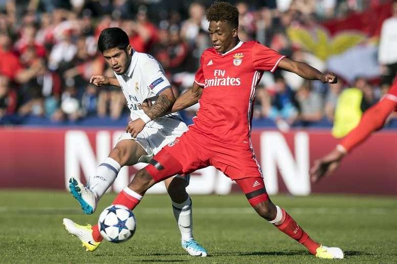 Gedson Fernandes (d) puede ser la próxima venta millonaria del Benfica. EFE/Archivo