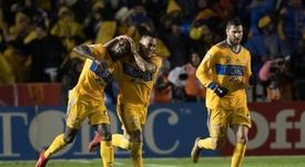 Tigres se alzó con un nuevo título. EFE