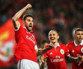 Já são vários anos no Benfica, e ainda mais em Portugal. EFE