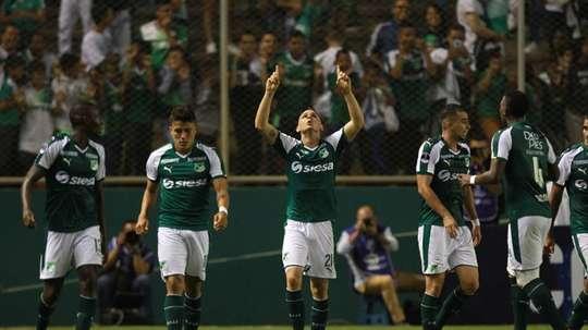 Deportivo Cali llegó a un acuerdo con el KAA Gent por Jhon Lucumi. EFE/Archivo