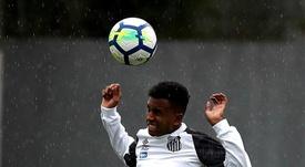 Rodrygo ya celebra goles con Sampaoli. EFE