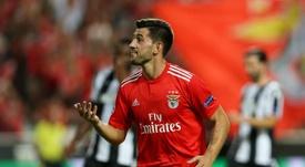 Pizzi fica no Benfica até 2023. EFE