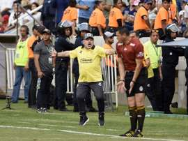 El técnico argentino de Dorados de Sinaloa, Diego Armando Maradona, reacciona durante un partido. EFE/Archivo
