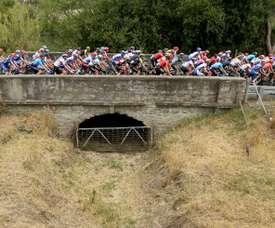 El ciclismo aparece en el puesto número 13 en la lista de deportes con más casos de dopaje en 2018, según el estudio publicado por el Movimiento para un Ciclismo Fiable (MPCC), asociación que tiene como objetivo defender la idea de un ciclismo transparente y responsable, que actualmente cuenta entre sus miembros con 7 equipos del World Tour.EFE