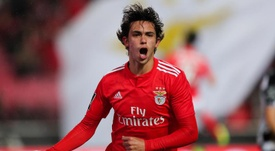 Cristiano Ronaldo aprovou a contratação de Félix. EFE
