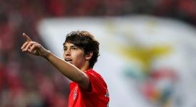 Manchester United songe à payer la clause de Joao Félix. EFE