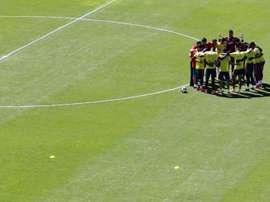 Muriel se pierde la Copa América. EFE