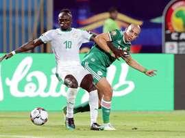 Les compos probables de la finale de la CAN entre le Sénégal et l'Algérie. EFE