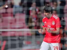 Joao Félix doit un dîner à ses anciens partenaires à Benfica. EFE/Archivo