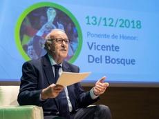 Del Bosque confía en Robert Moreno al frente de 'la Roja'. EFE