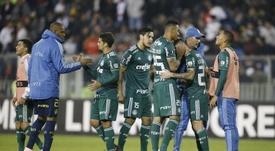 Palmeiras mantiene el ritmo y Sao Paulo humilla a Chapecoense. EFE/Elvis González/Archivo